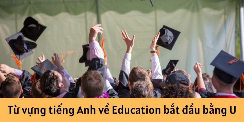 Từ vựng tiếng Anh về Education bắt đầu bằng U