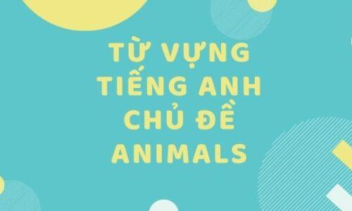 Từ vựng tiếng Anh chủ đề animals 2021 – Các loài động vật