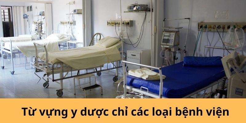 Từ vựng y dược chỉ các loại bệnh viện