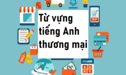 Từ vựng tiếng Anh thương mại PDF – Trọn bộ thuật ngữ