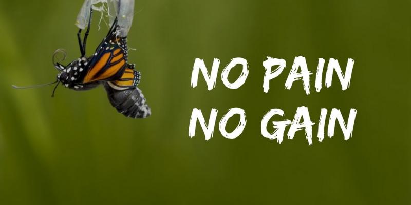 Định nghĩa về No pain no gain