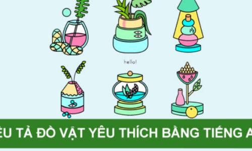 10 đoạn văn miêu tả đồ vật yêu thích bằng tiếng Anh hay nhất