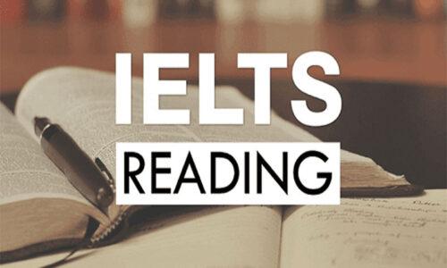 Các dạng câu hỏi và bài tập đọc hiểu (Reading) - Đáp án chi tiết