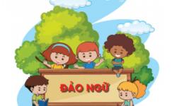 Tổng hợp bài tập câu đảo ngữ trong tiếng Anh – Đáp án chi tiết