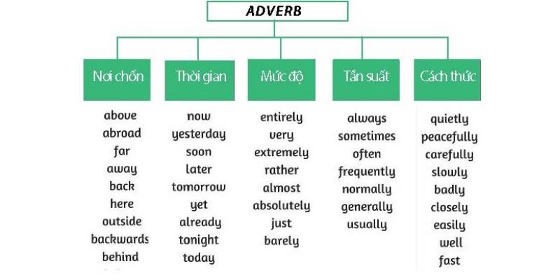 Phân loại trạng từ trong tiếng Anh