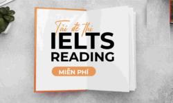 Tổng hợp bài tập IELTS Reading có đáp án đầy đủ và chi tiết nhất