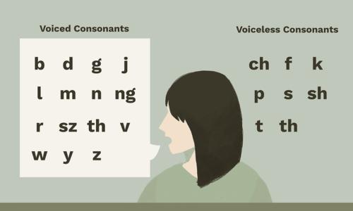 Nguyên âm và phụ âm trong tiếng anh