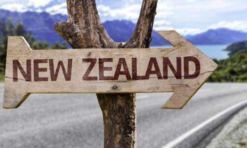 Danh sách 5 trung tâm tư vấn du học New Zealand tốt nhất